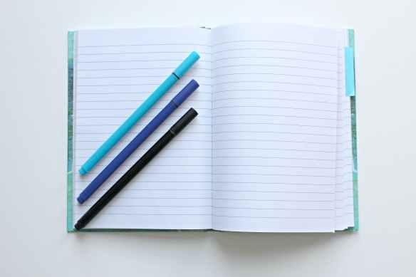 analog binder blank book