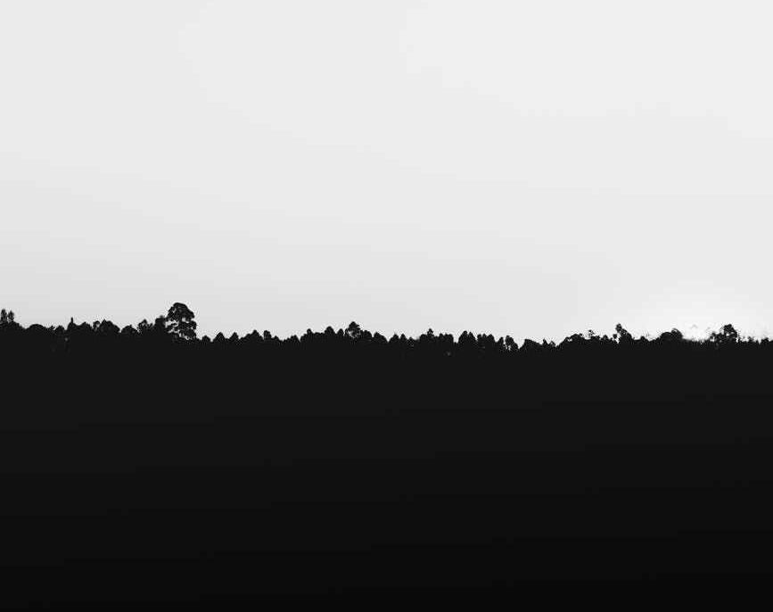 pexels-photo-925743.jpeg
