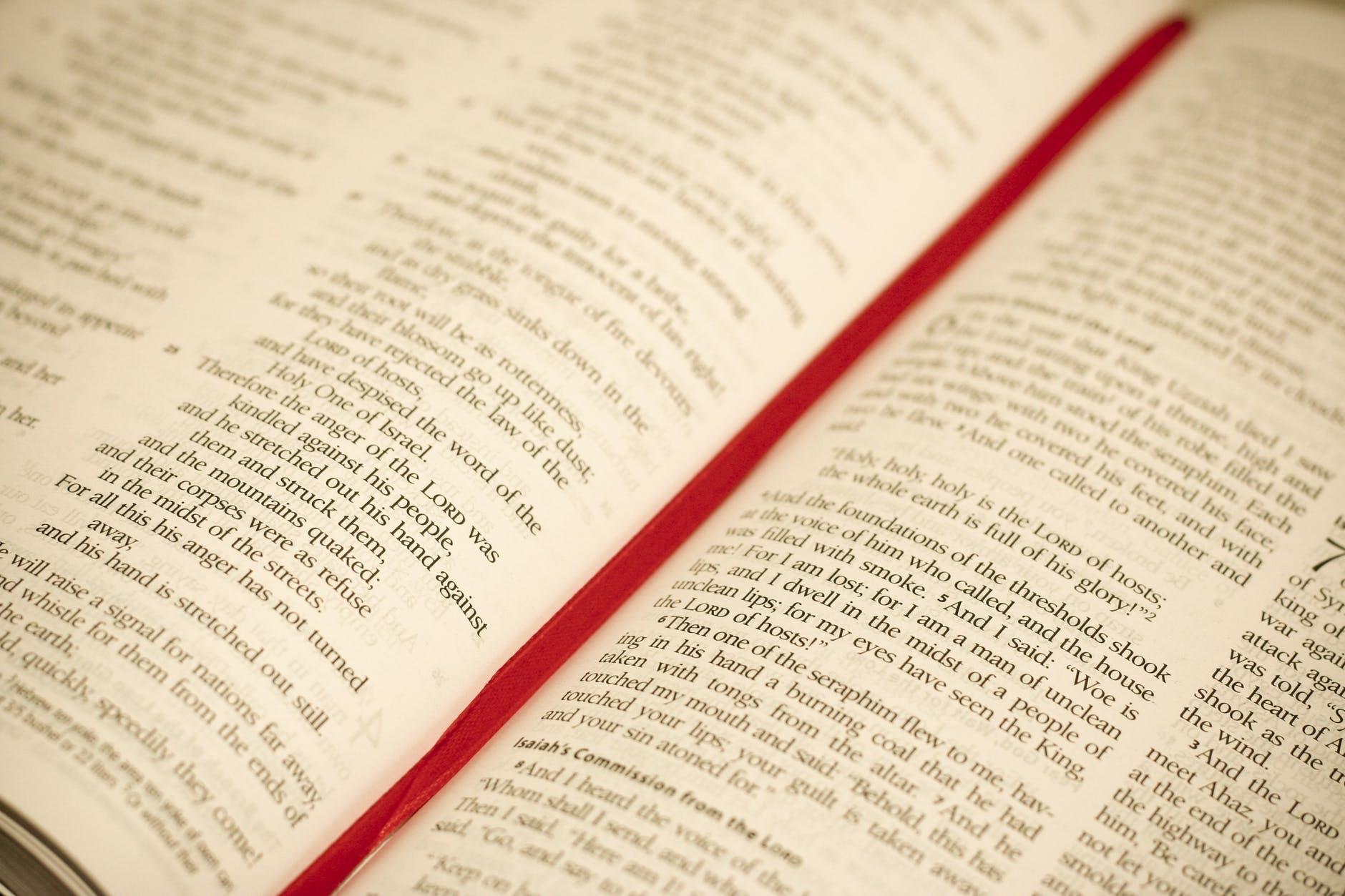 bible blur book catholic
