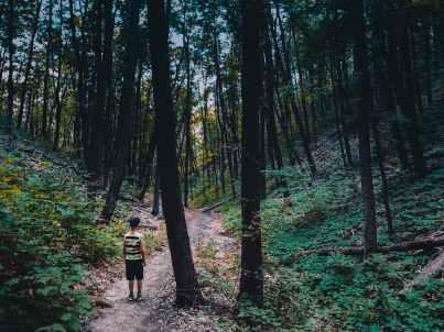 person wearing shirt standing near tree