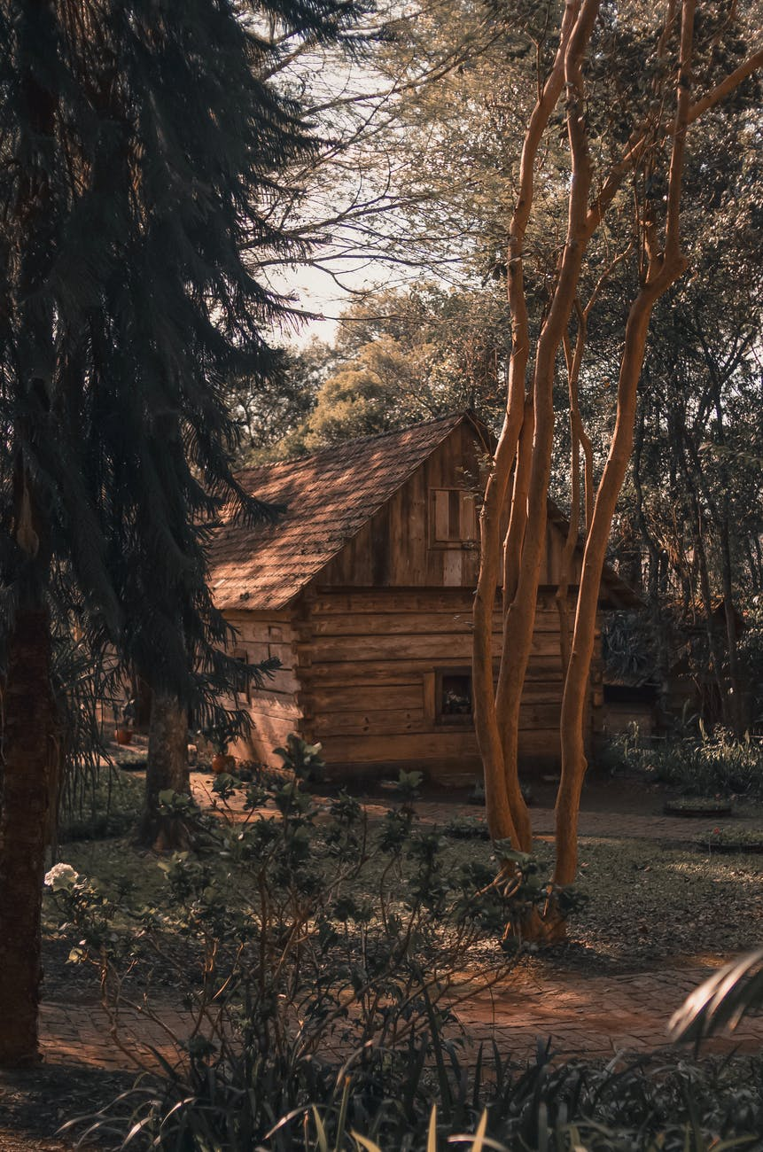 brown wooden house near trees