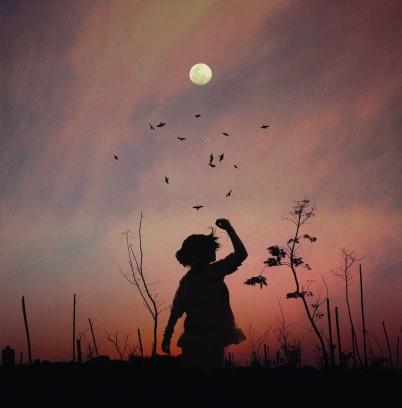 afterglow art backlit birds