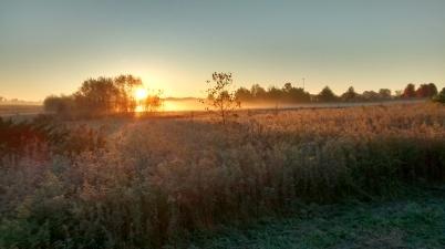 Sunrise at Walnut Woods