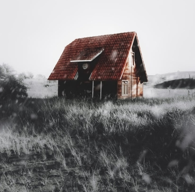 brown house on selective color photography